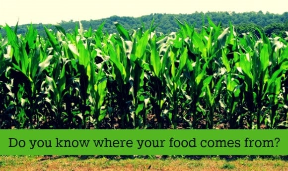 where-food-comes-from