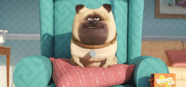 Wondering where else you've seen the cast of The Secret Life of Pets? Check out other movies they've appeared in!